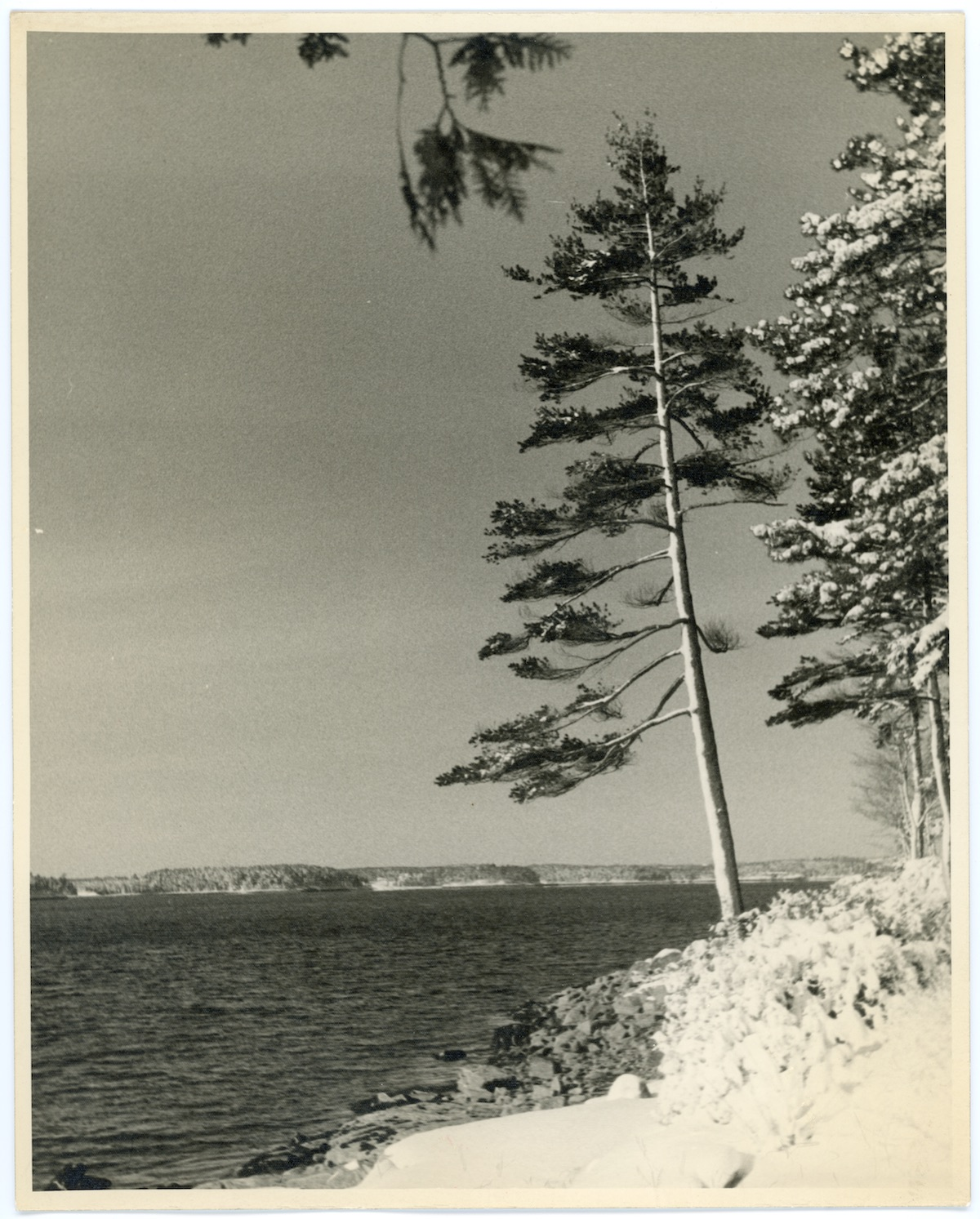 View of Hall Quarry from Sargeant Drive, Somes Sound